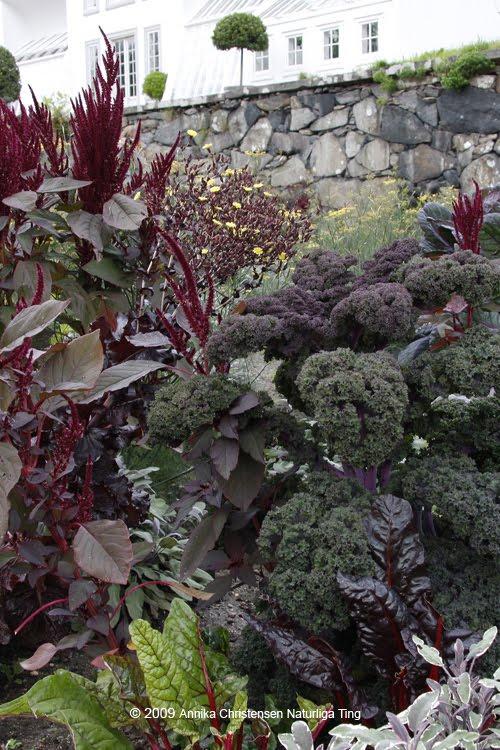 via naturligating.blogspot.com