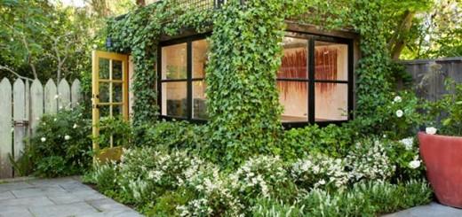 Verde verticale; muri vegetali   blossom zine blog