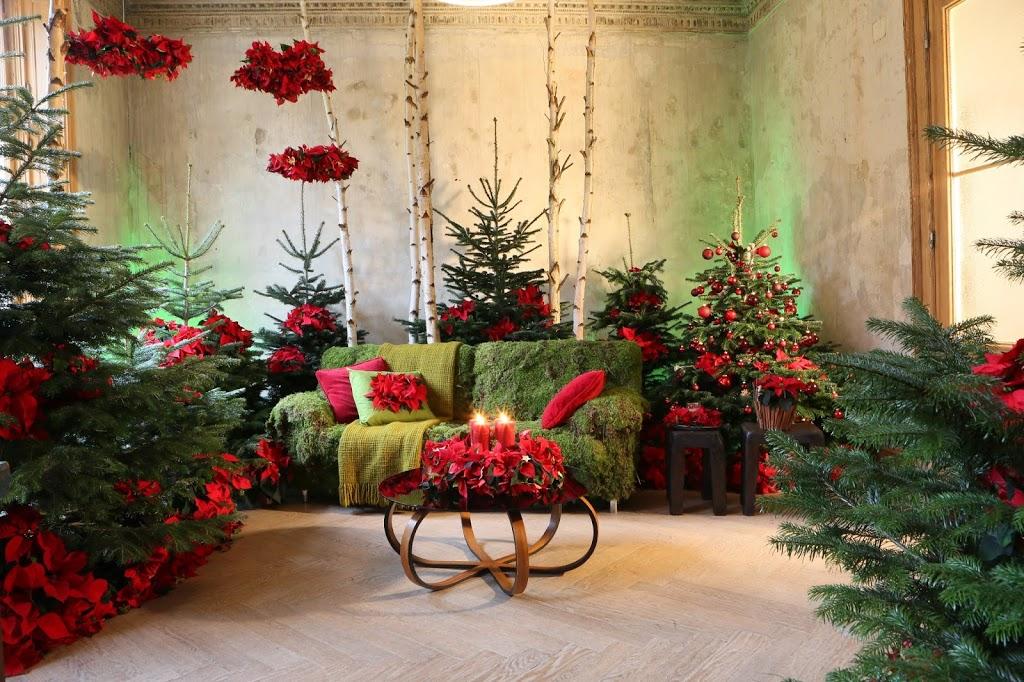 idee da copiare con le Stelle di Natale  BLOSSOM ZINE BLOG