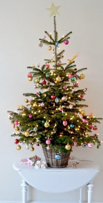 Metti Un Abete In Casa Per Natale Blossom Zine Blog