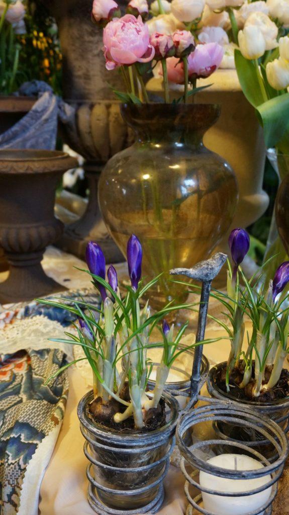 dana garden design figli dei fiori,como 1