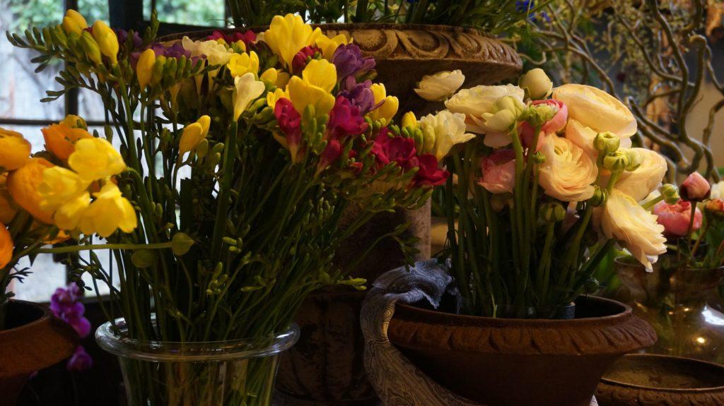 dana garden design figli dei fiori,como 5