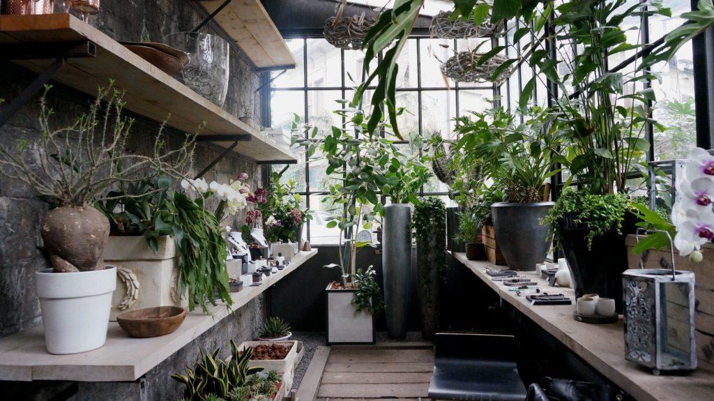 dana garden design figli dei fiori,como 8