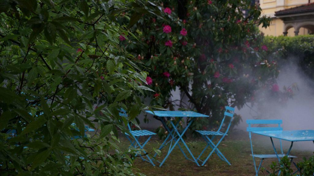 Blossom zine BLOG Piante e Dintorni Lugano5