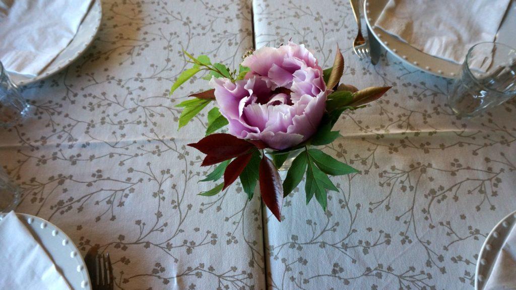 Blossom zine BLOG erbe spontanee7