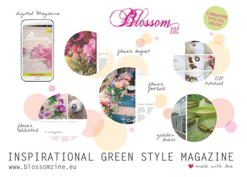 Blossom zine Summer issue800
