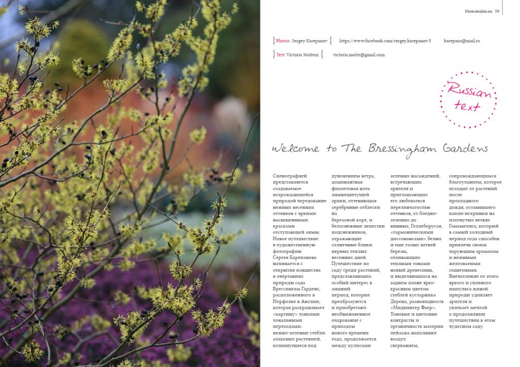 Spring 8 2015 Blossomzine 30