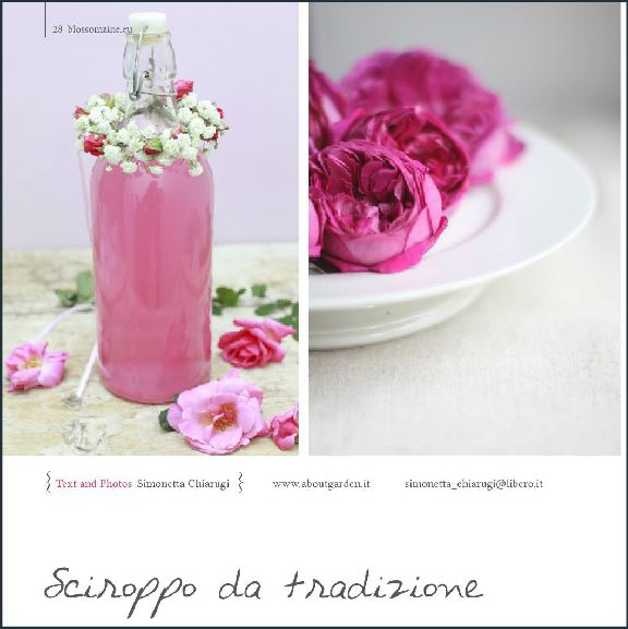 blossom zine Summer