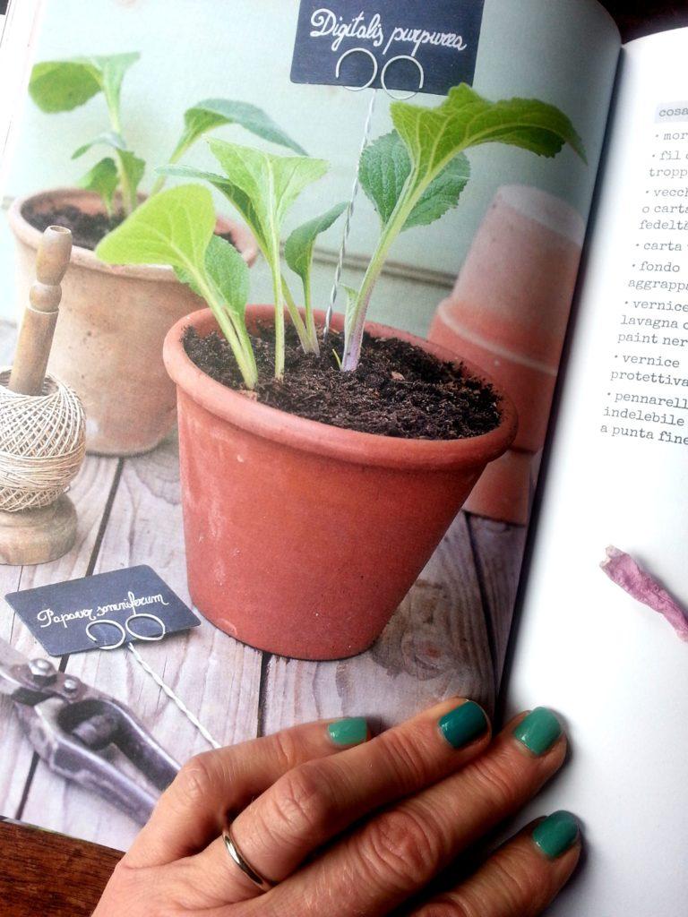 blossom zine buon gardening simonetta chiarugi (5)