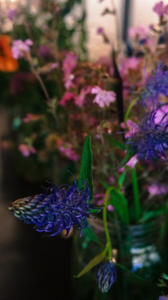 Blossom zine ortinfestival susigan papponi erbe_-14 (11)