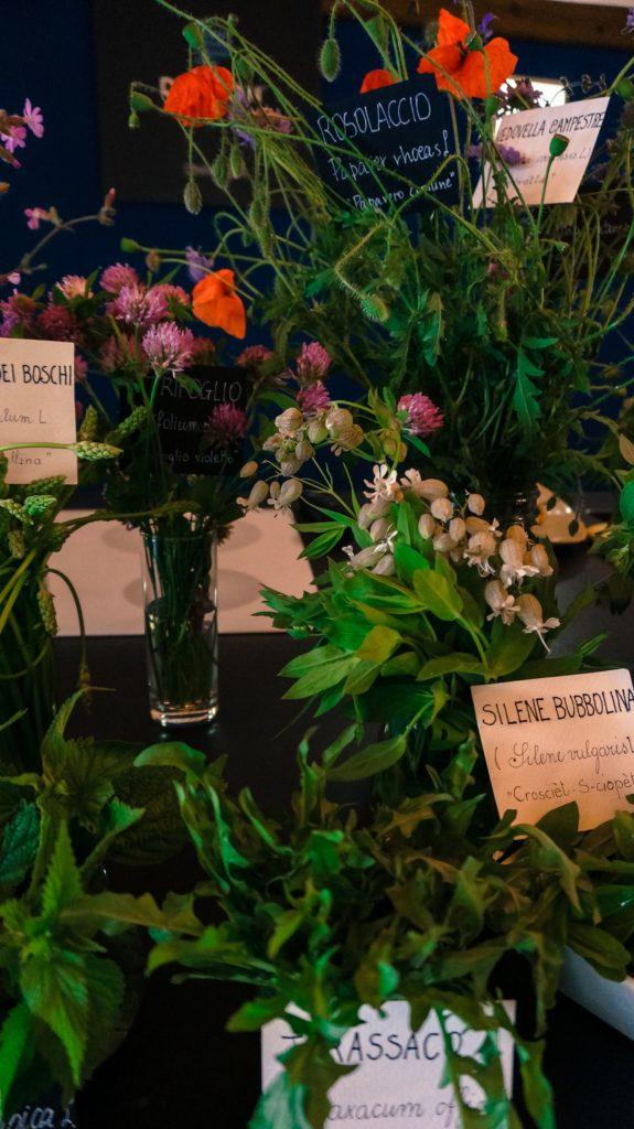 Blossom zine ortinfestival susigan papponi erbe_-14 (2)