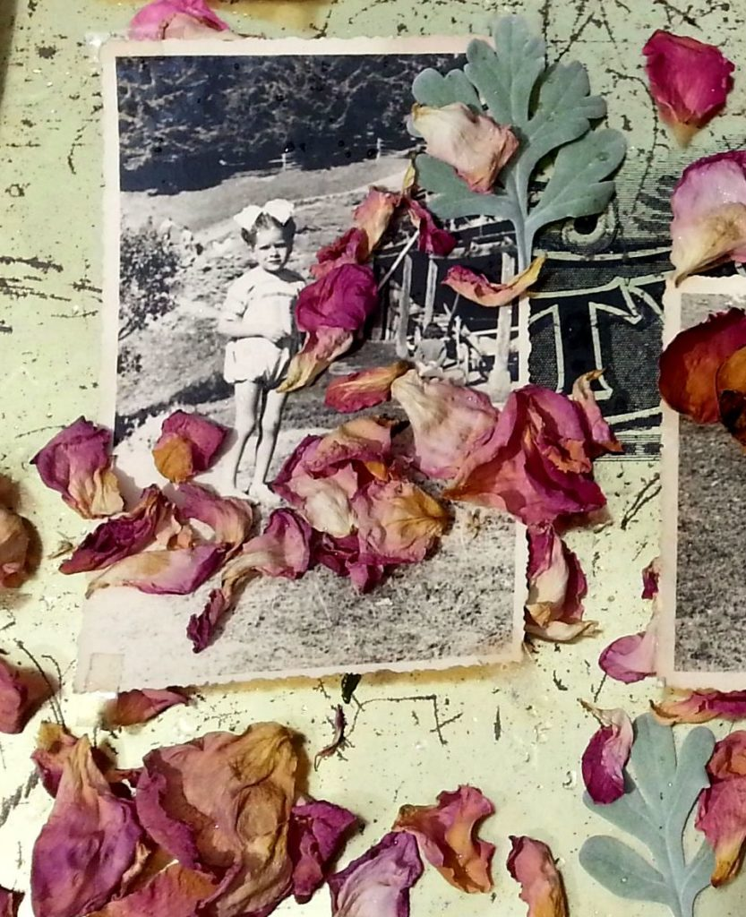 Blossom zine Gressoney Artemisia 2015 .12