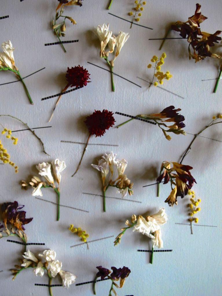 Blossom zine blog decorazione murale   (3)