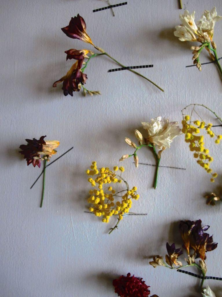 Blossom zine blog decorazione murale   (4)