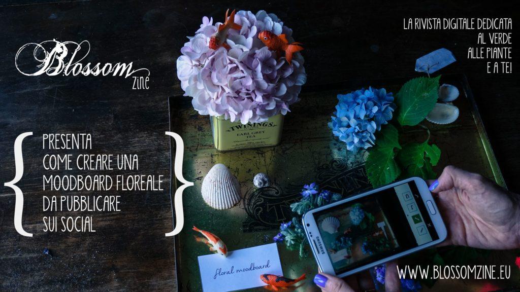 blossom zine moodboard floreale contest su facebook