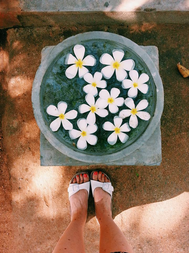 Blossom zine viaggio in Sri Lanka 10
