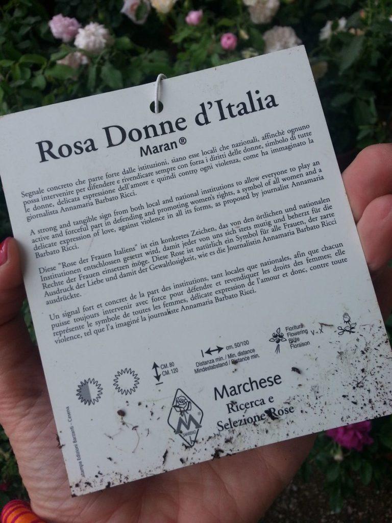 Blossom zine blog Perugia Flower Show 2015 (16)
