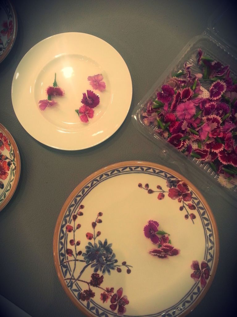blossom zine da villeroy & boch 2