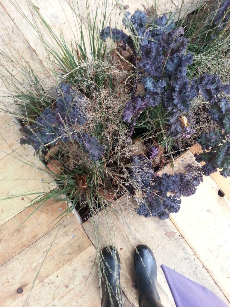 orticolario, blossom zine Uniti da un filo verde progettata da Silvia Ghirelli per lo spazio All'Origine