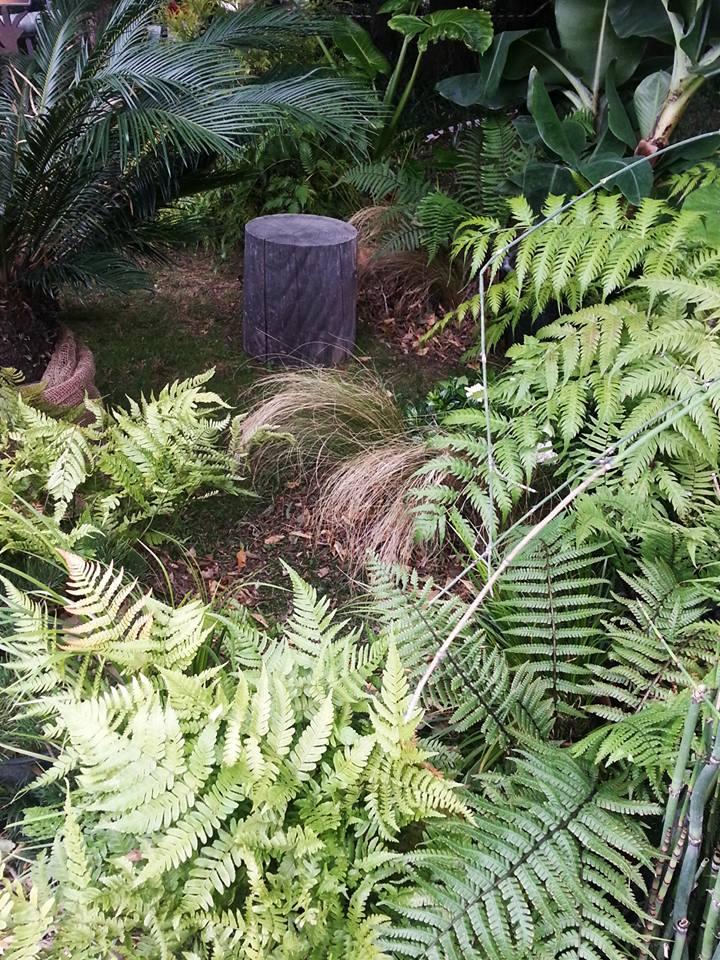 orticolario, blossom zine stand giardino evoluzione 4 (2)