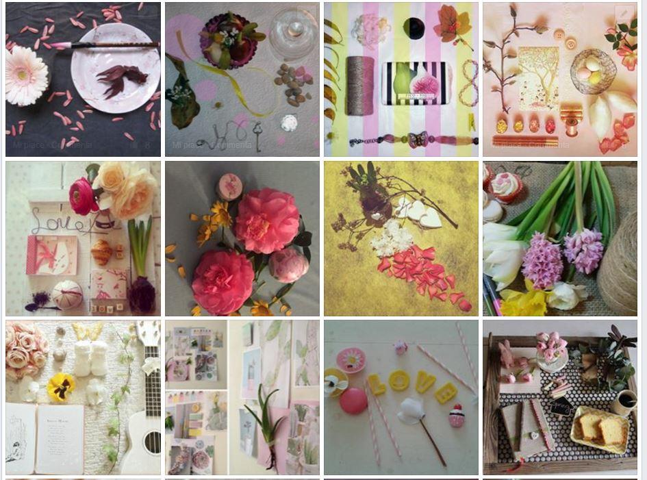 Blossom zine contest cattura album foto grafico3