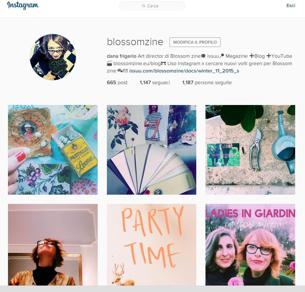 blossom zine instagram