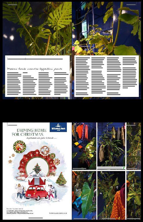 blossom zine sequenza articoli winter 2