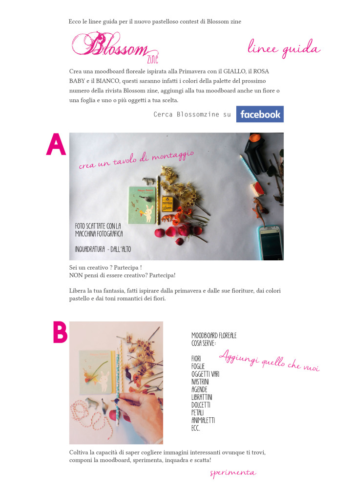 linee guida blog