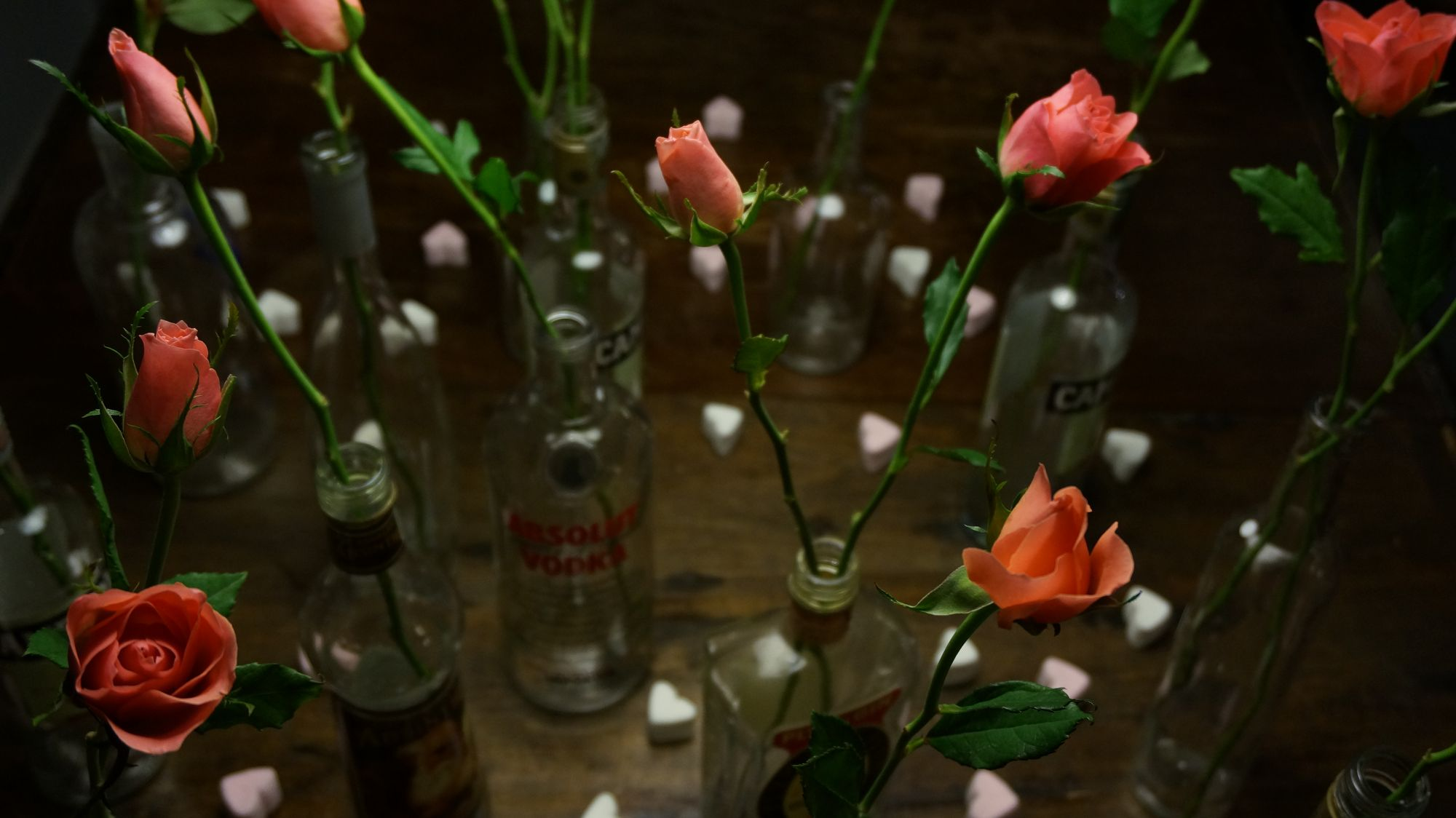 blossom zine blog san valentino4