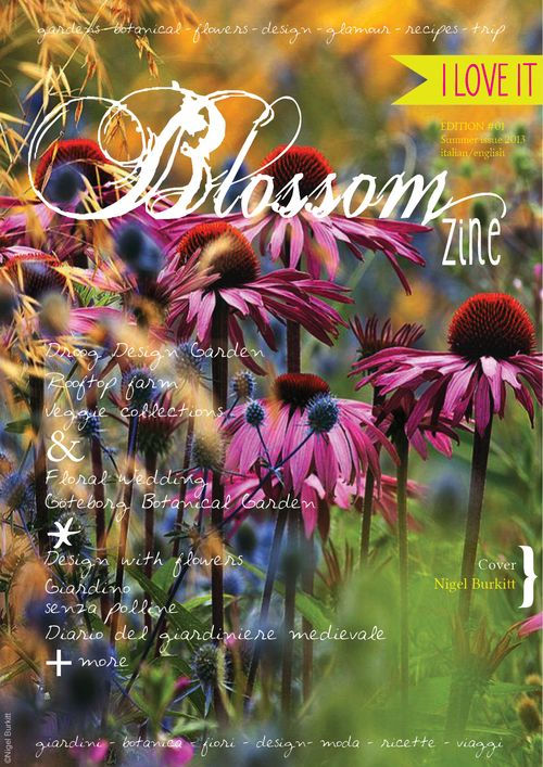 cover summer Blossom zine br