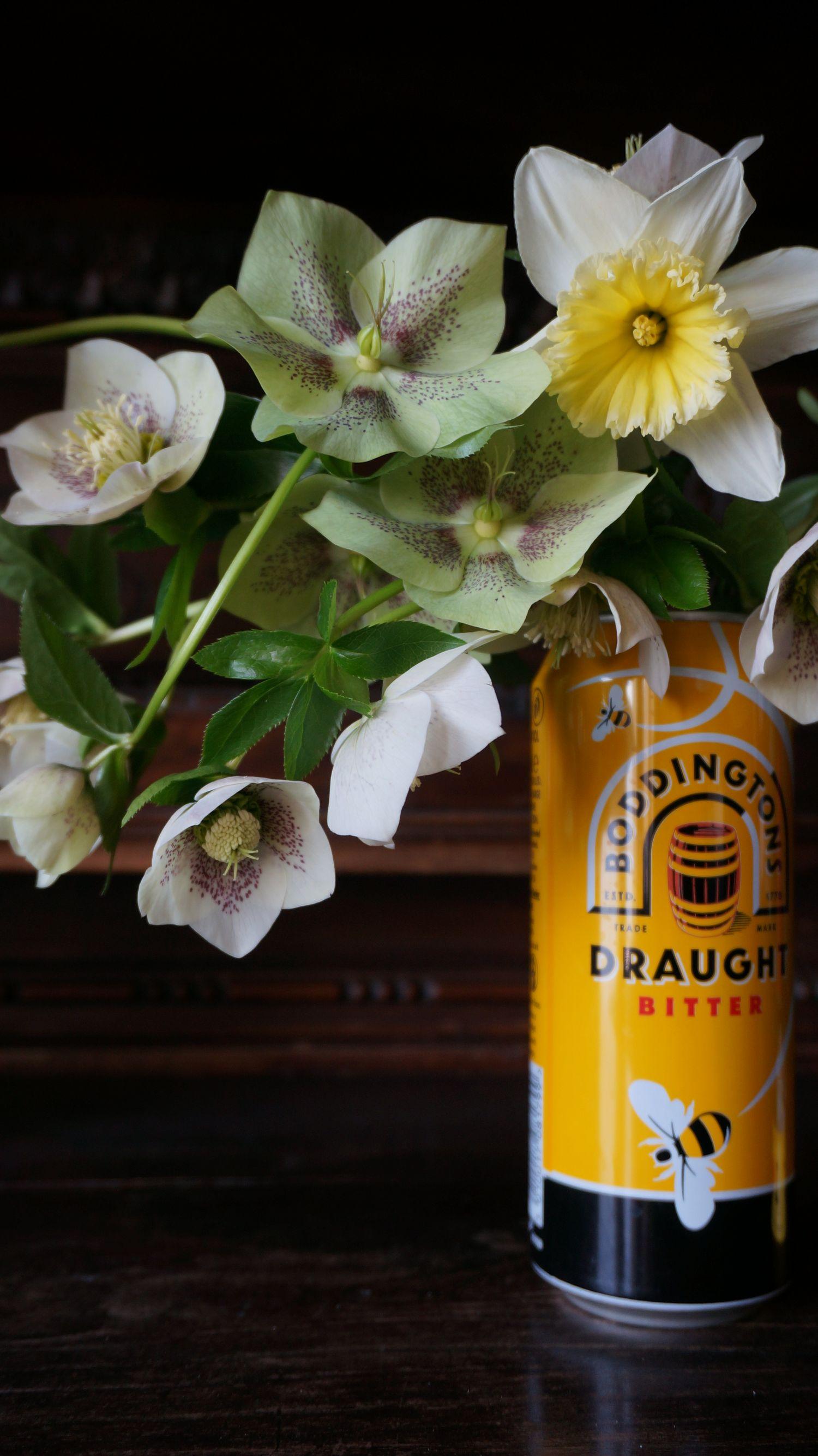 Blossom zine Helleborus orientalis (2)