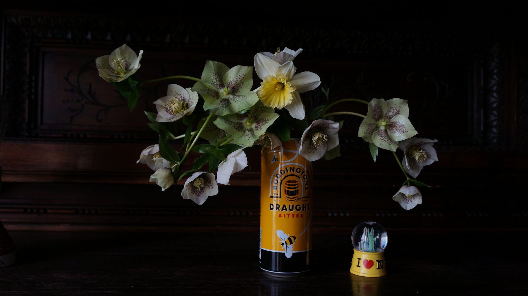 Blossom zine Helleborus orientalis (6)