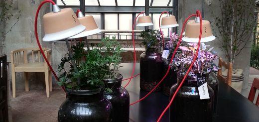 Blossom zine Fuori Salone MULTIPLE ricerche  (14)