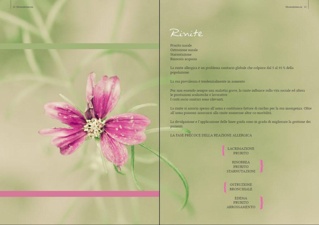 blossom zine ALLERGIE