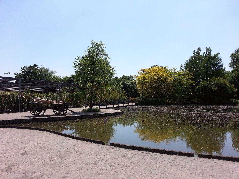 viridea about garden workshop (3)