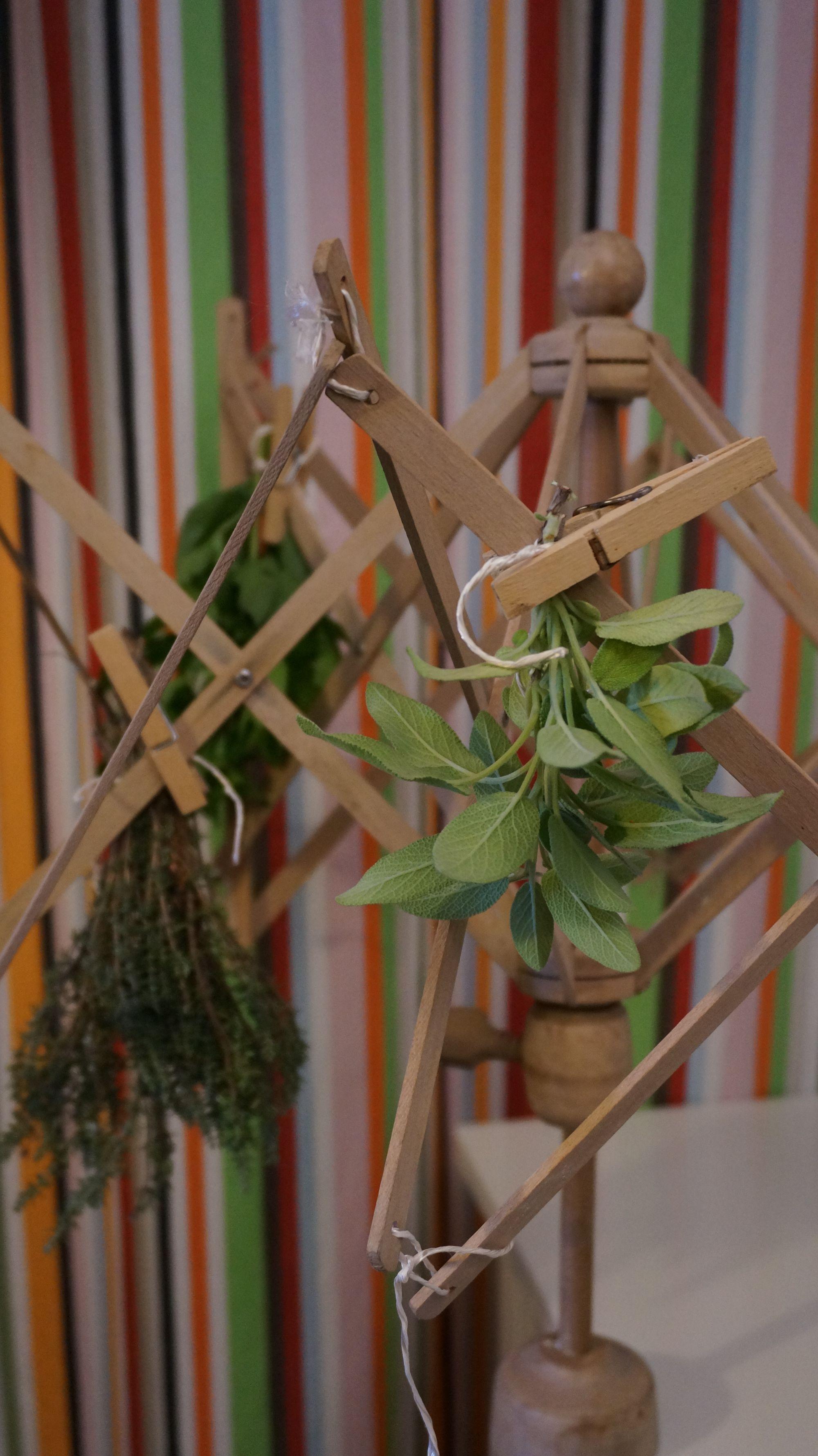 blossom-zine-ricola-essicare-erbe-1