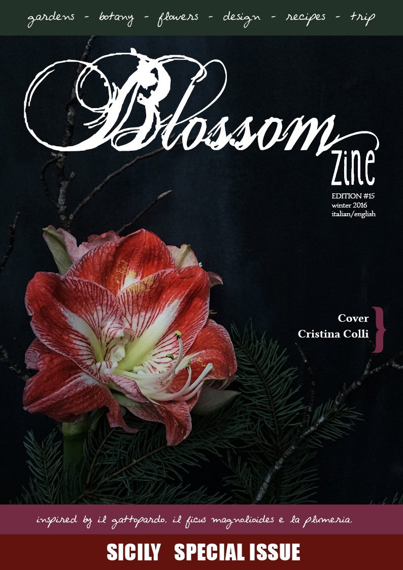 winter-15-blossom-zine-cover