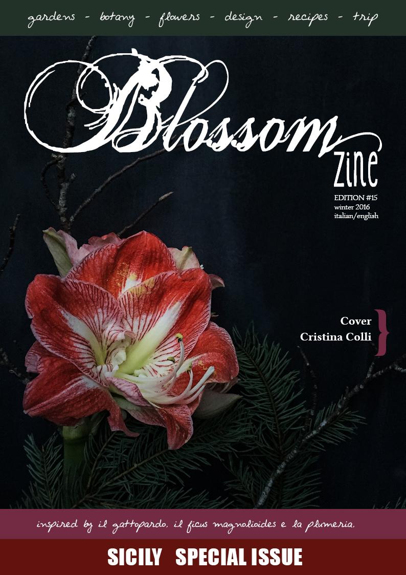 winter-15-blossom-zine-cover