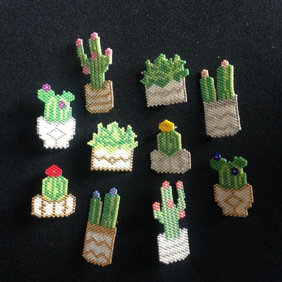 cactus mania