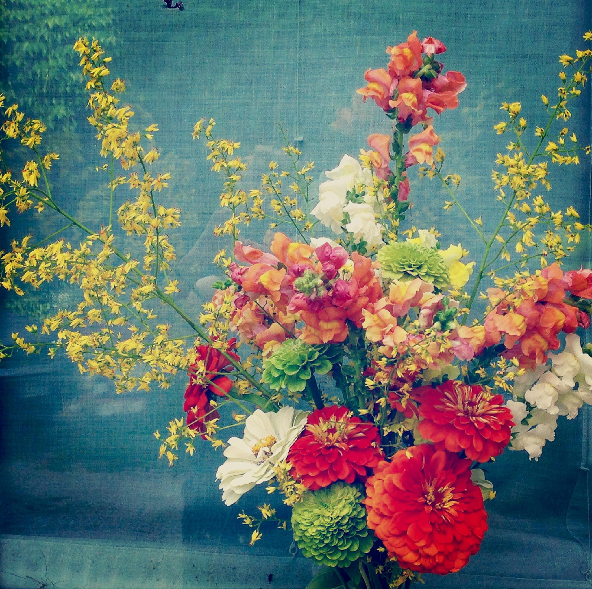 OFF Olga Flower Farm