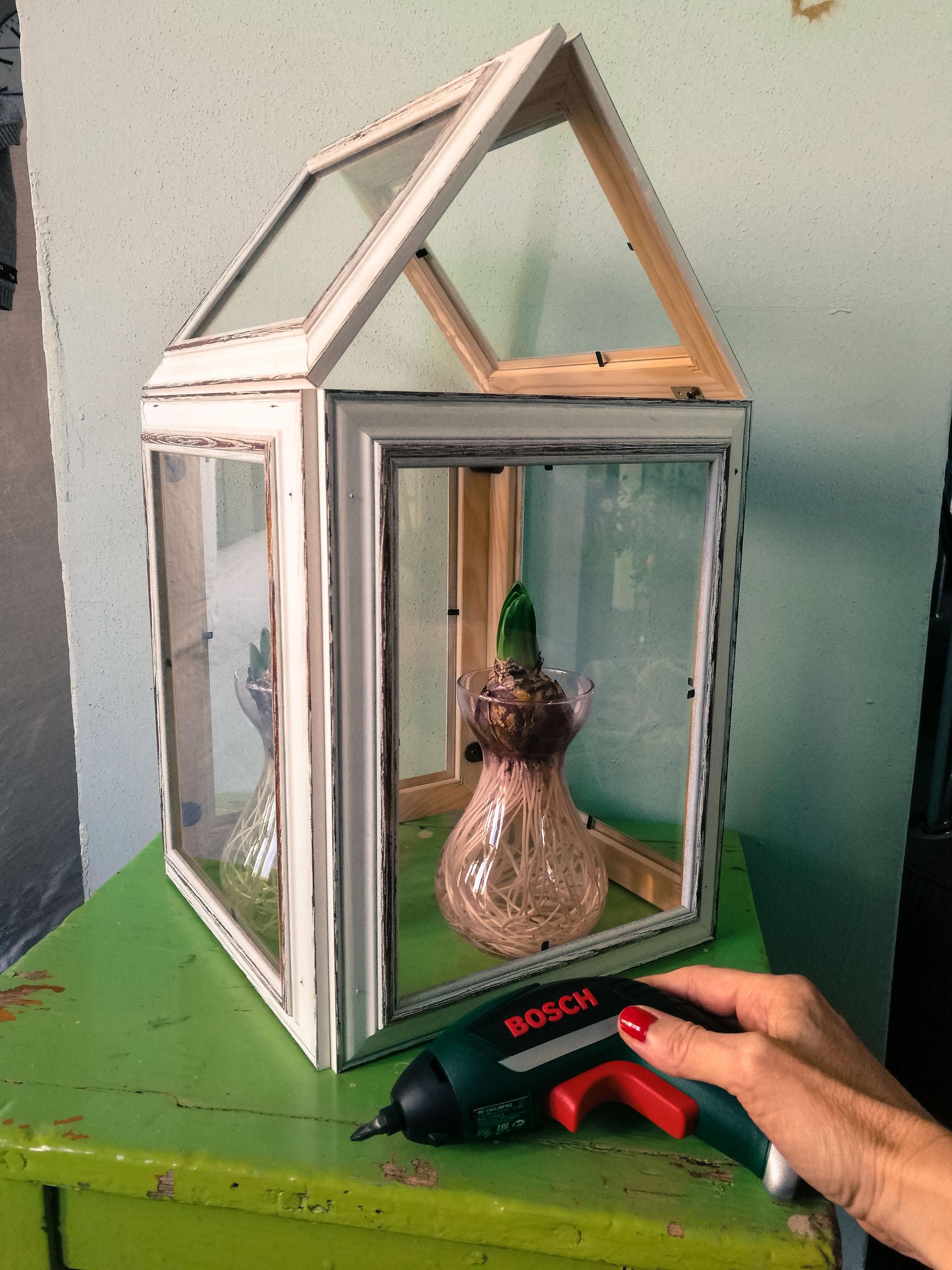 Blossom zine come costruire una mini serra con delle cornici IXO Bosch