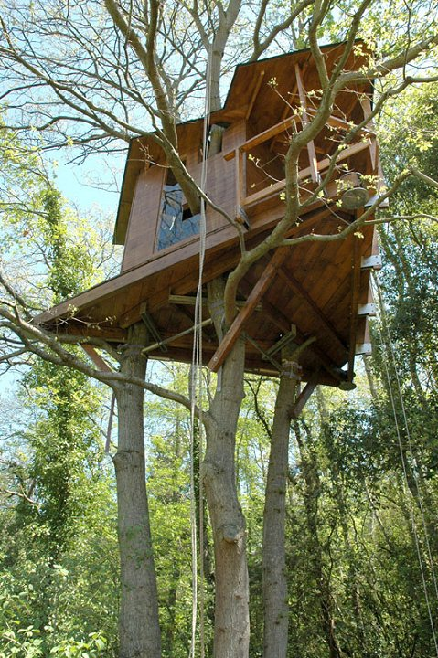 Chi non sognava da bambino di farsi la casa sull 39 albero blossom zine blog - Costruire casa albero ...