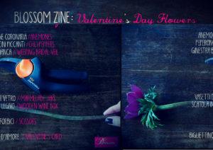 Blossom zine valentine s