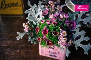 Blossom zine per Pastiglie Leone mini bouquet
