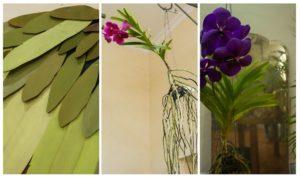 baka blanca dana garden design-blossom zine blog4