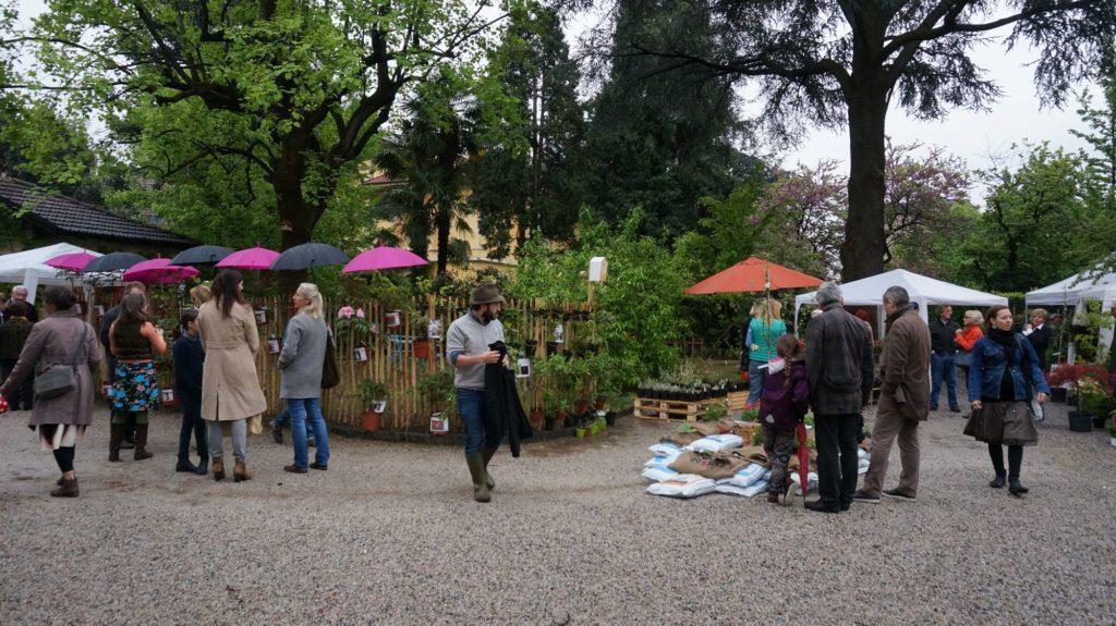 Blossom zine BLOG Piante e Dintorni Lugano1