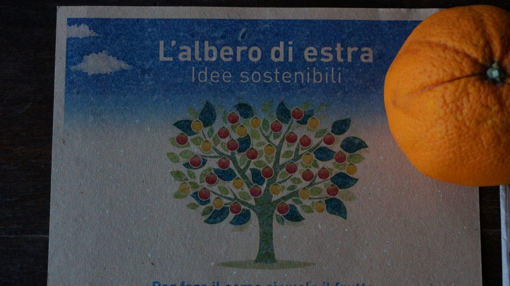 Blossom zine blog albero di estra1
