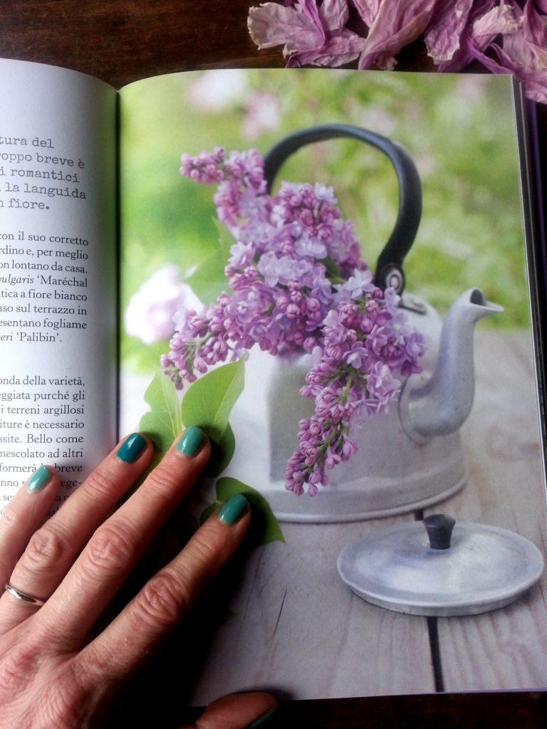 blossom zine buon gardening simonetta chiarugi (4)