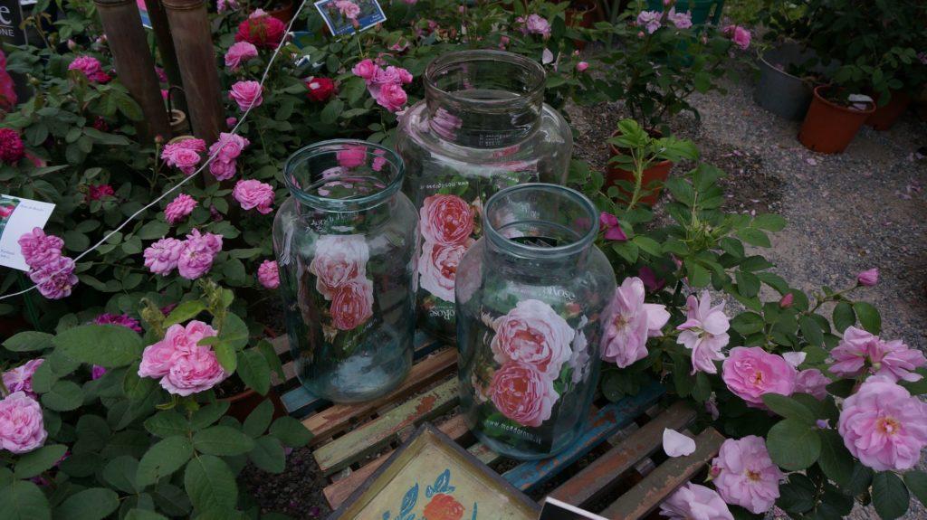 orticola 2015 blossom zine BLOG (33)