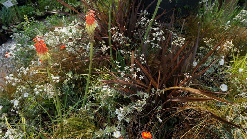 orticola 2015 blossom zine BLOG (7)